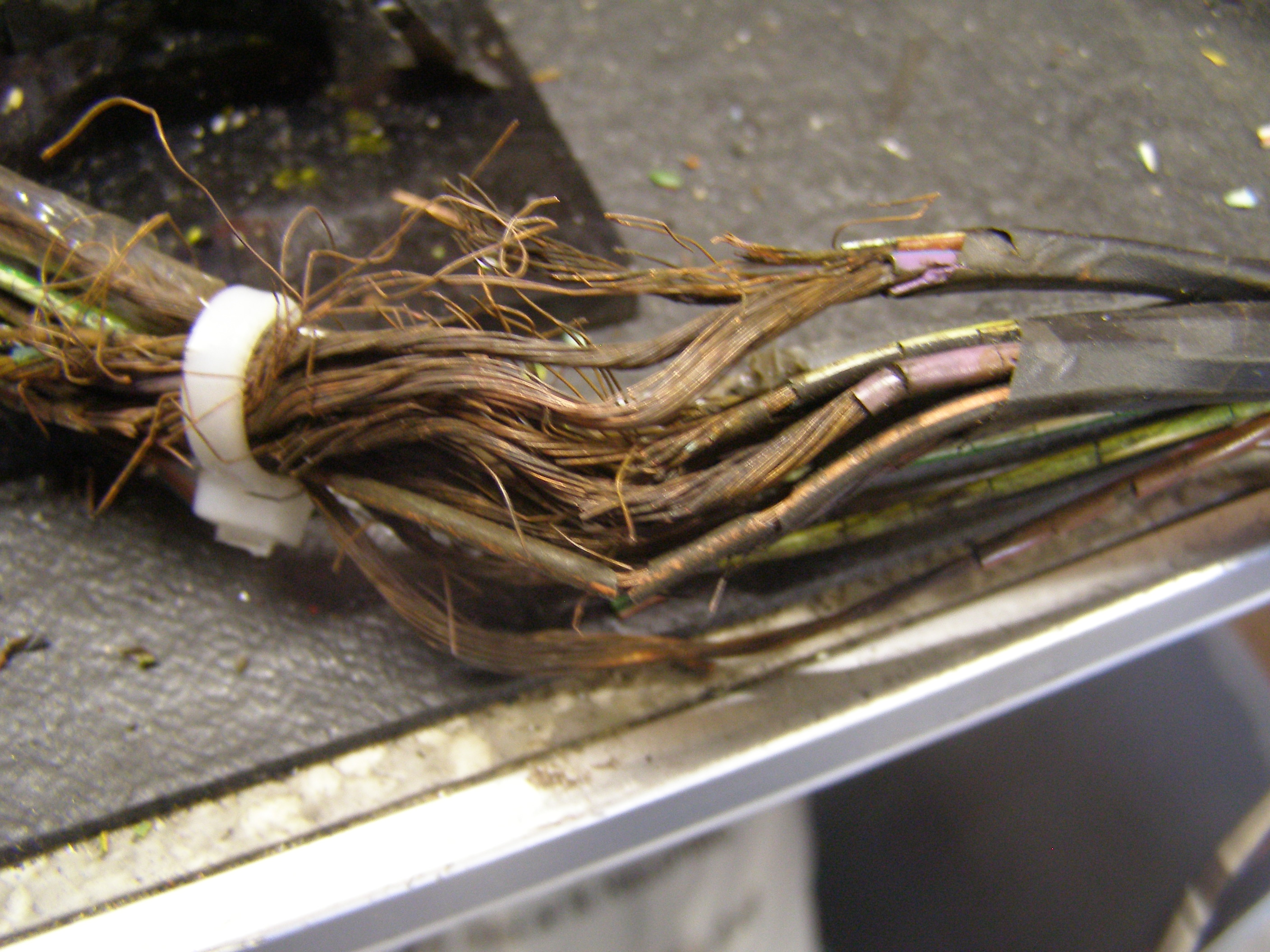 Biodegradable Wiring Harness Were A Bad Idea
